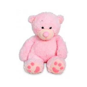 Small Pink Teddy